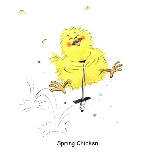 The gallery for gt Chicken Cartoon Images